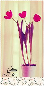 الصورة الرمزية زهرة المنتدي