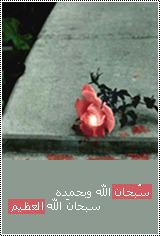 الصورة الرمزية غفرانك ربى ♥ ..